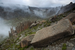 Bale Mountains by Delphin Ruche